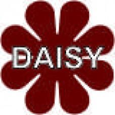 Daisy - 9 x 9 in. Magnet Die Cut