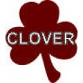 Clover - 6x7 in. Magnet Die Cut