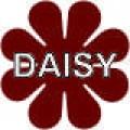 Daisy - 4.5x4.5 in. Magnet Die Cut