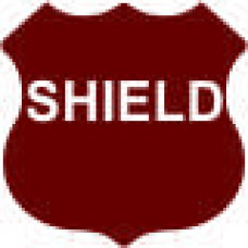 Shield - 12x12 in. Magnet Die Cut